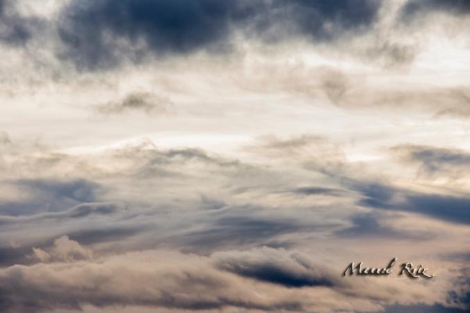 El dia transcurrió acorde al cielo nuboso  y variable sobre mi, a veces luz , a veces sombrío , todo cambiante y poco definido.